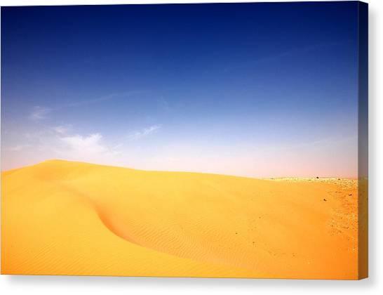 Sand Dunes Canvas Print by Manu G