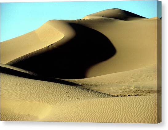 Sahara Desert Canvas Print - Sand Dunes Near Kerzaz by Sinclair Stammers/science Photo Library