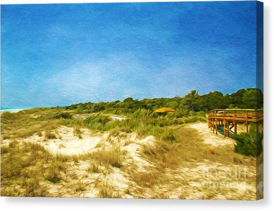 Summer Isles Canvas Print - Sapelo Dunes by Laura D Young
