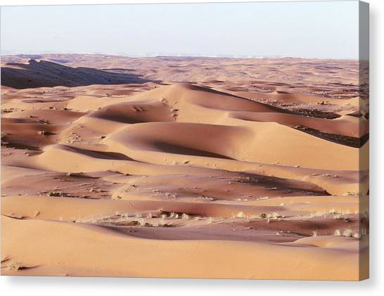 Arabian Desert Canvas Print - Sand Dunes by Ray Ellis