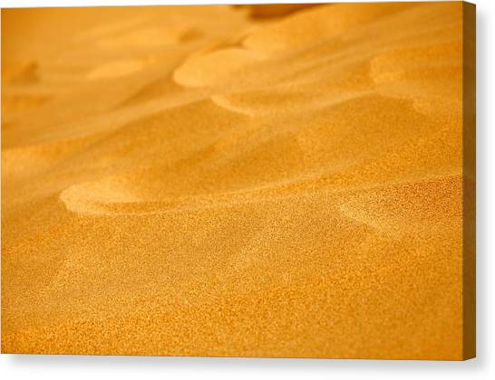 Sand Canvas Print by Manu G