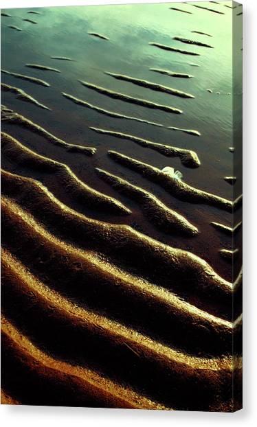 Sunderland Canvas Print - Sand Ridges On The Beach by Peter Mulligan