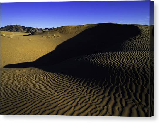 Sahara Desert Canvas Print - Sand Ripples by Chad Dutson