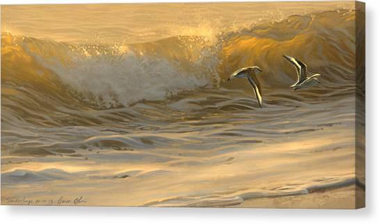 Sanderlings Canvas Print
