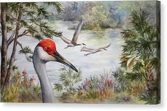 Sandhill View Canvas Print