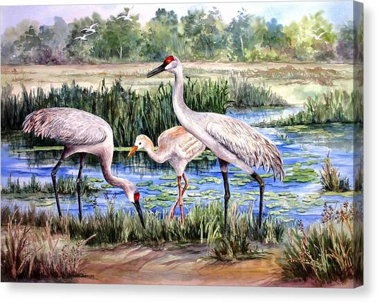 Sandhills By The Pond Canvas Print