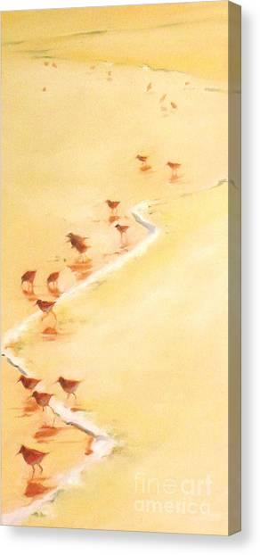 Sandpiper Promenade Canvas Print