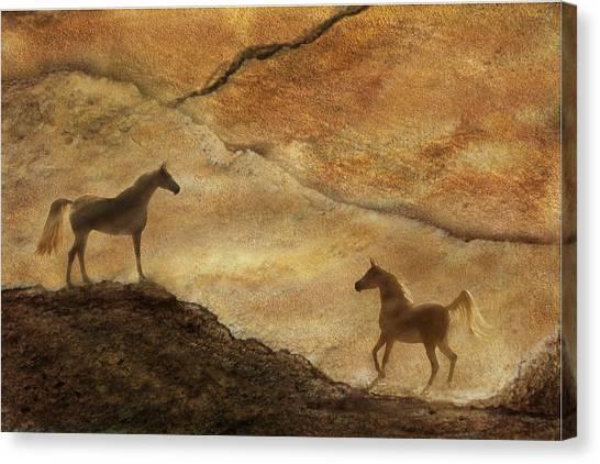 Sandstorm Canvas Print