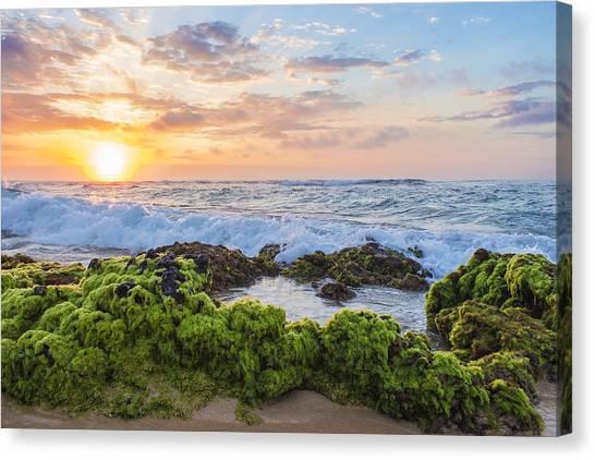 Sandy Beach Sunrise 2 Canvas Print