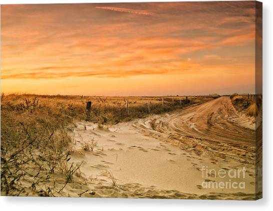Sandy Road Leading To The Beach Canvas Print