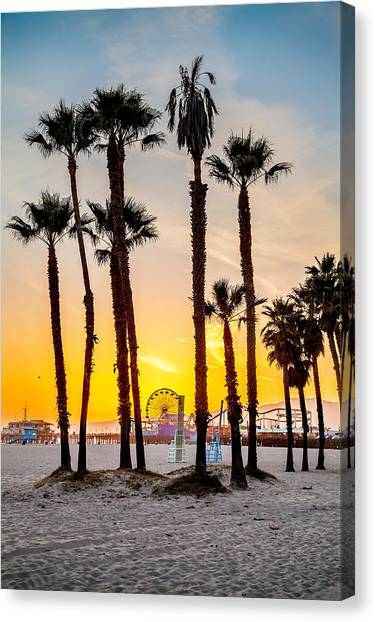 Santa Monica Pier Canvas Print - Santa Monica Palms by Az Jackson