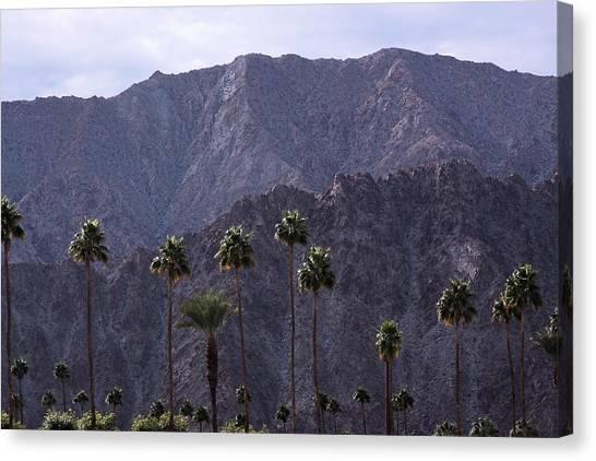 Santa Rosa Mountains Canvas Print