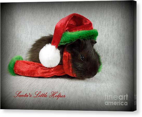 Santa's Little Helper Canvas Print