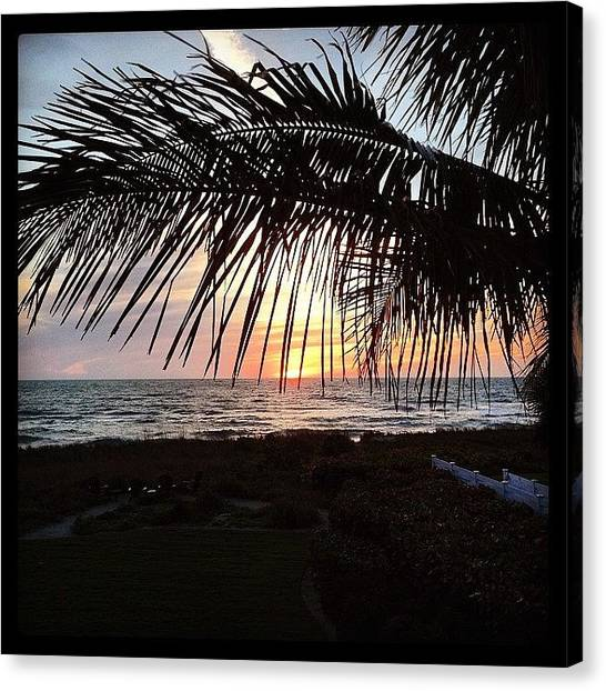 Canvas Print - Sarasota Sunset #i❤️fla by Rosie Odonnell