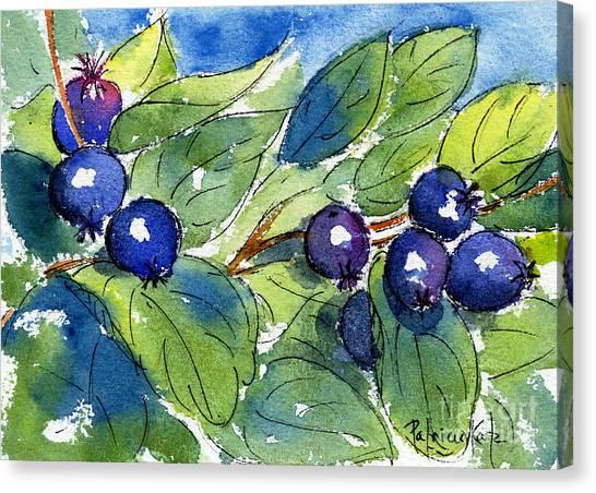 Saskatoon Berries Canvas Print