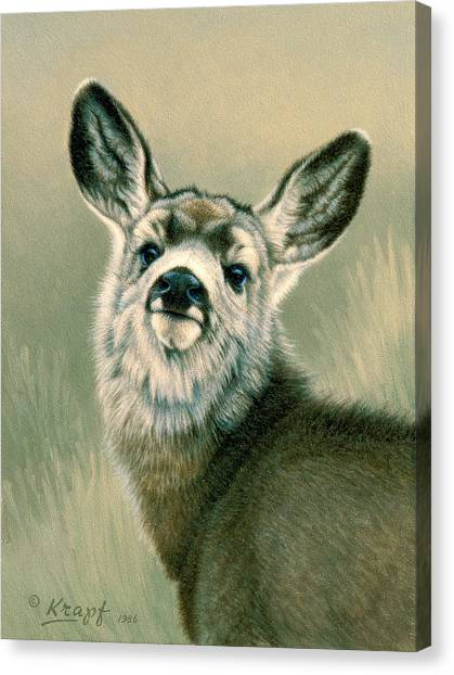 Fawns Canvas Print - Sassy Look by Paul Krapf