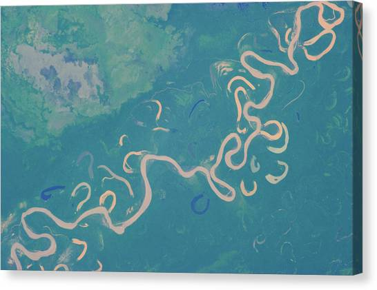 Amazon Rainforest Canvas Print - Satellite View Of Plains In Beni by Panoramic Images