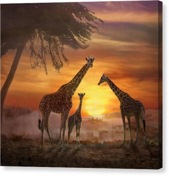 Savanna Sunset Canvas Print