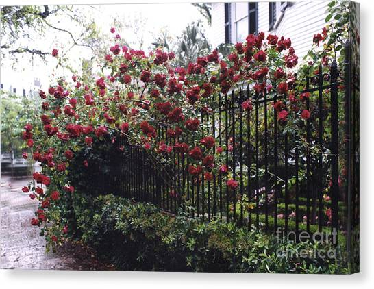 Street Rods Canvas Print - Savannah Georgia Red Roses And Gates Architecture by Kathy Fornal