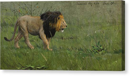 Kings Canvas Print - Savannah King by Aaron Blaise