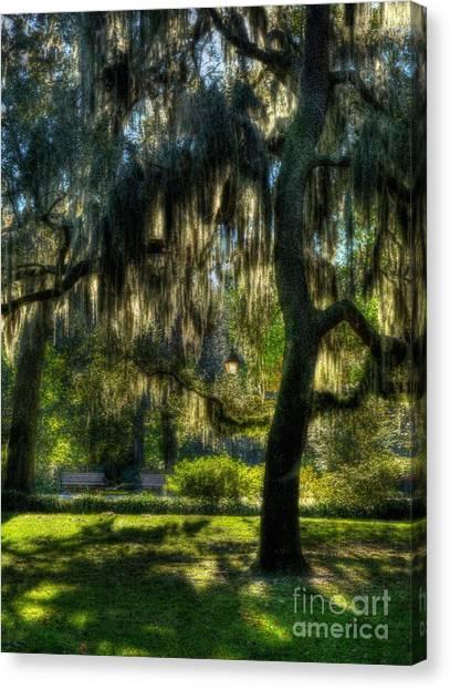 Canvas Print featuring the photograph Savannah Sunshine by Mel Steinhauer