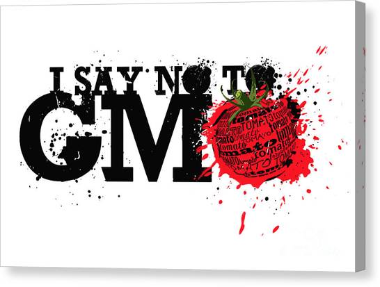 Tomato Canvas Print - Say No To Gmo Graffiti Print With Tomato And Typography by Sassan Filsoof