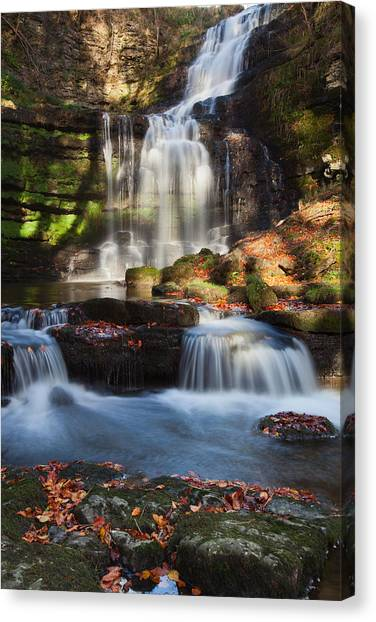 Scalber Force Canvas Print
