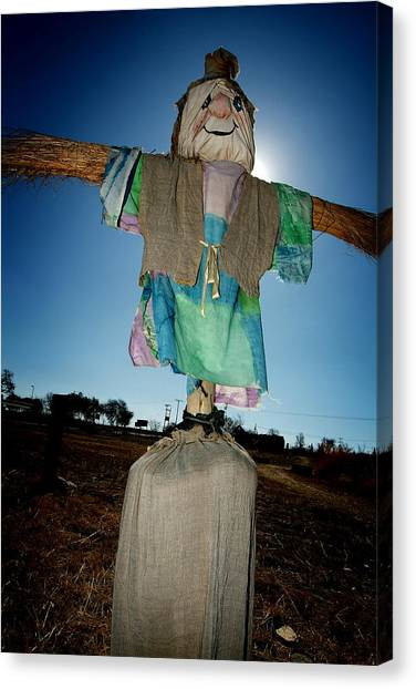 Scarecrow In Filed Canvas Print