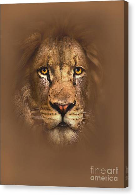 Lions Canvas Print - Scarface Lion by Robert Foster