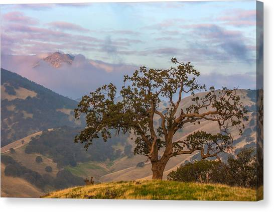 Contra Canvas Print - Scattered Clouds At Sunrise by Marc Crumpler