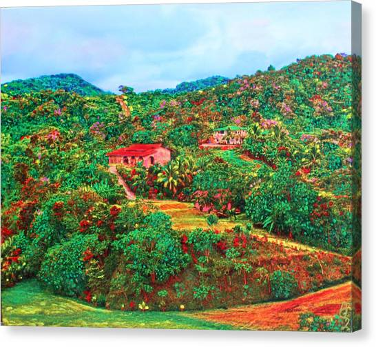 Scene From Mahogony Bay Honduras Canvas Print