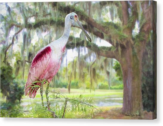 Spoonbills Canvas Print - Scene From The Deep South by Bonnie Barry