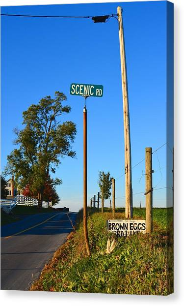 Scenic Road With Brown Eggs 3rd Lane Canvas Print