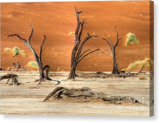 Scenic View At Sossusvlei Canvas Print
