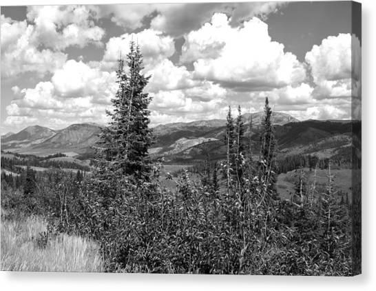 Scenic View  Canvas Print