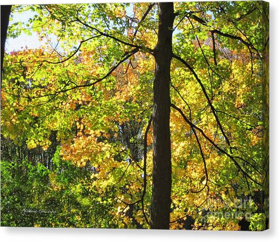 Scenic View Canvas Print
