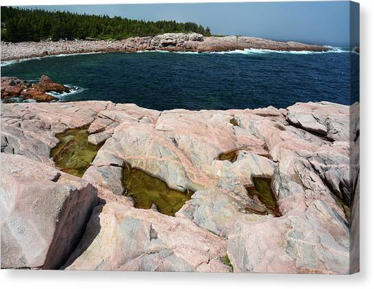 Cabot Trail Canvas Print - Scenic View Of Exposed Bedrock by Darlyne A. Murawski
