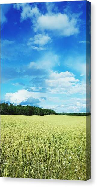 Scenic View Of Field Against Cloudy Sky Canvas Print by Jonas Rask / EyeEm