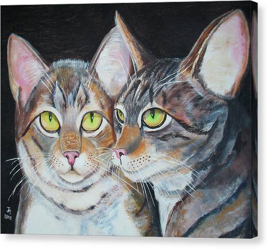 Scheming Cats Canvas Print