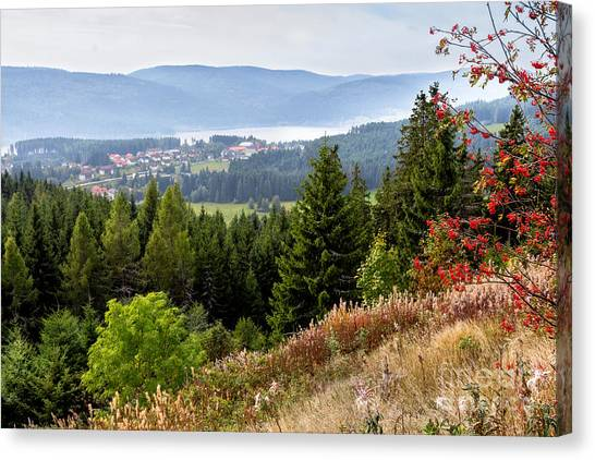 Schluchsee In The Black Forest Canvas Print