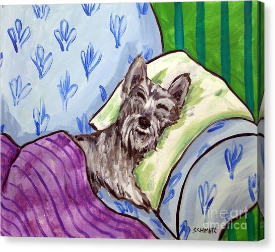 Schnauzer Sleeping Canvas Print by Jay  Schmetz