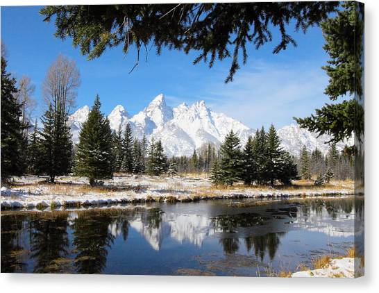 Schwabacher Landing - Grand Teton National Park Canvas Print
