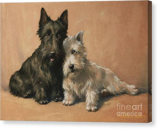 Running Backs Canvas Print - Scottish Terrier by Christopher Gifford Ambler