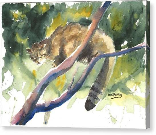 Scottish Wild Cat In A Tree Canvas Print