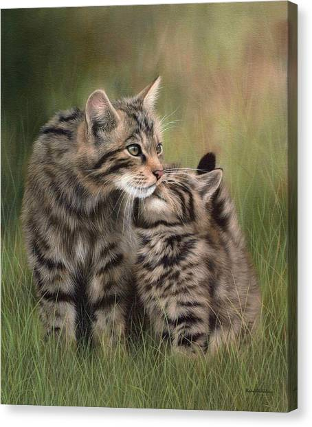Scottish Wildcats Painting - In Support Of The Scottish Wildcat Haven Project Canvas Print