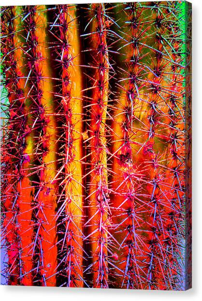 Scottsdale Saguaro Canvas Print