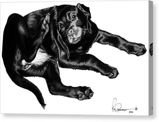 Scratching Lab Canvas Print by Rob Christensen
