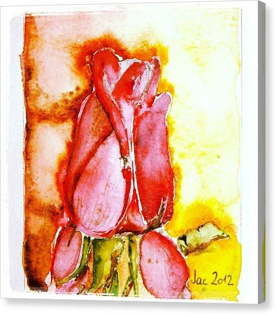 Watercolor Canvas Print - Screaming Rose by Jacqueline Schreiber