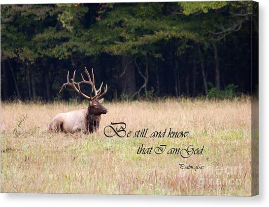 Scripture Photo With Elk Sitting Canvas Print