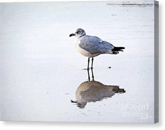 Sea Birds No.1 Canvas Print